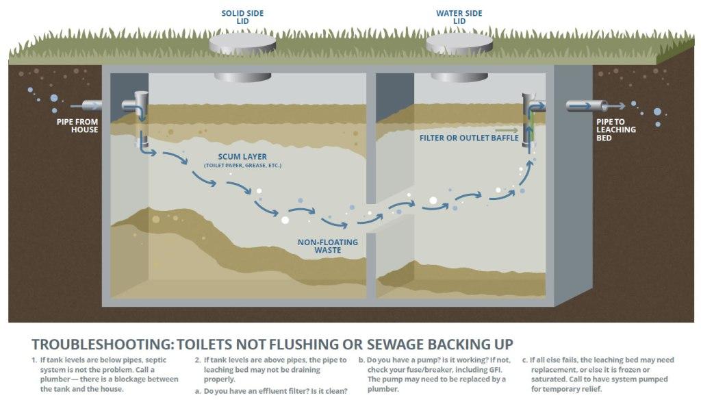 septic system illustration
